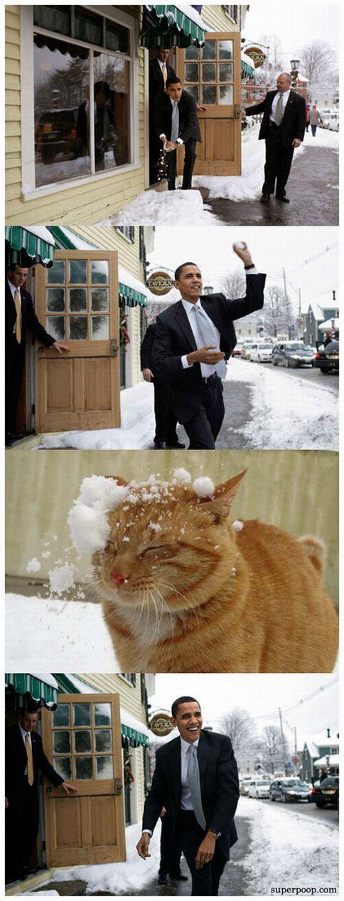 barack-obama-snow-neve-lolcats.jpg