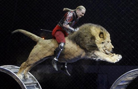 riding-a-lion