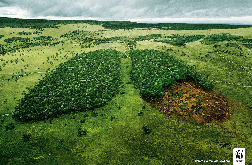 free-lungs-wwf