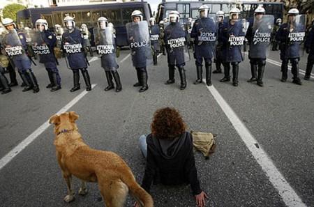 riot-dog-2008 kanellos